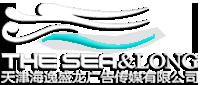 天津海逸盛龙广告传媒有限公司